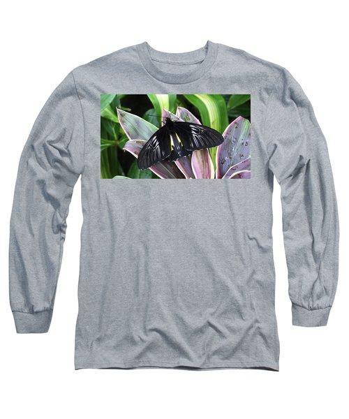 Golden Birdwing Long Sleeve T-Shirt