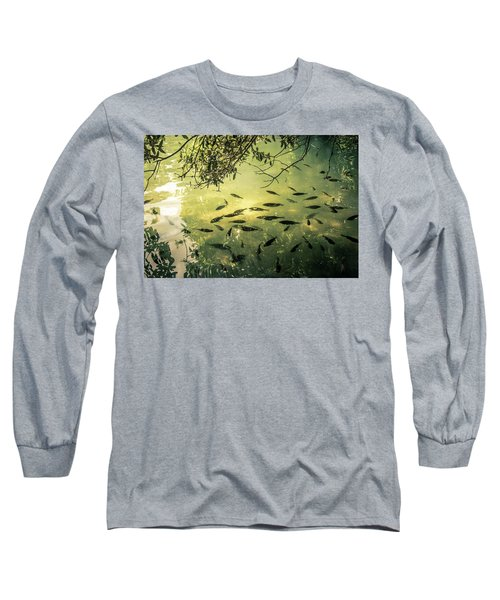Golden Pond With Fish Long Sleeve T-Shirt by Menachem Ganon