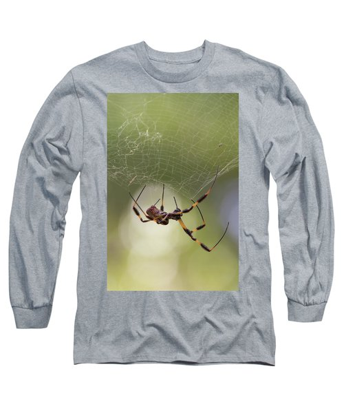 Golden-silk Spider Long Sleeve T-Shirt