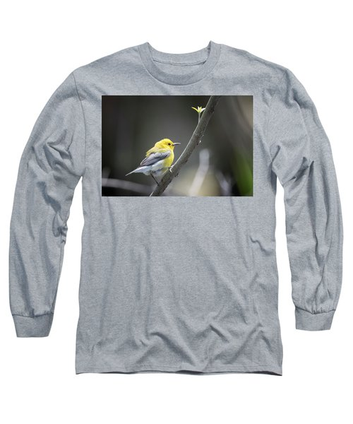 Golden Swamp Warbler Long Sleeve T-Shirt