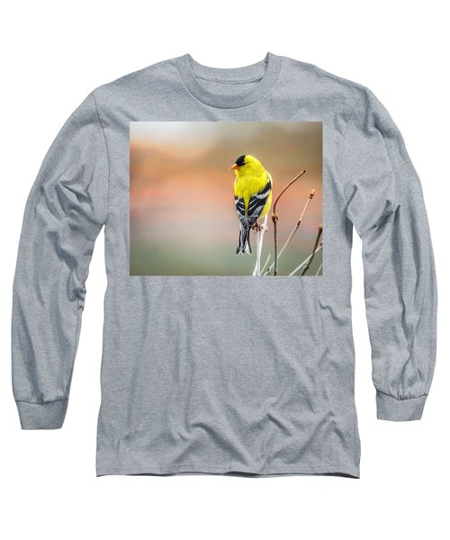 Goldfinch At Sunrise Long Sleeve T-Shirt by Susan Capuano