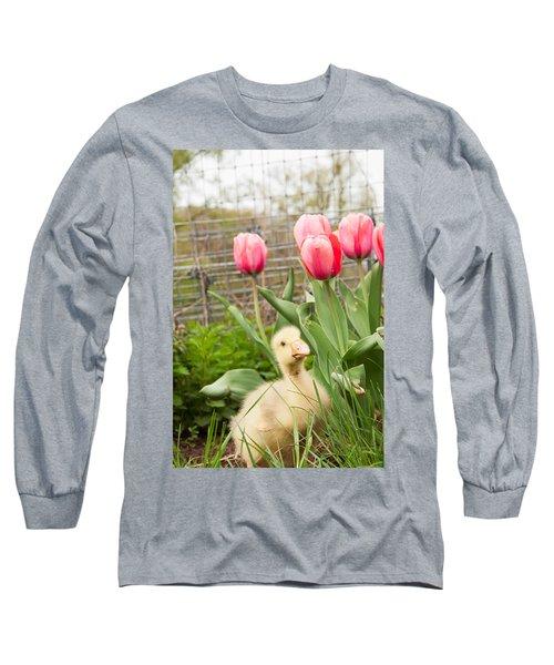 Gosling In Tulip Garden Long Sleeve T-Shirt