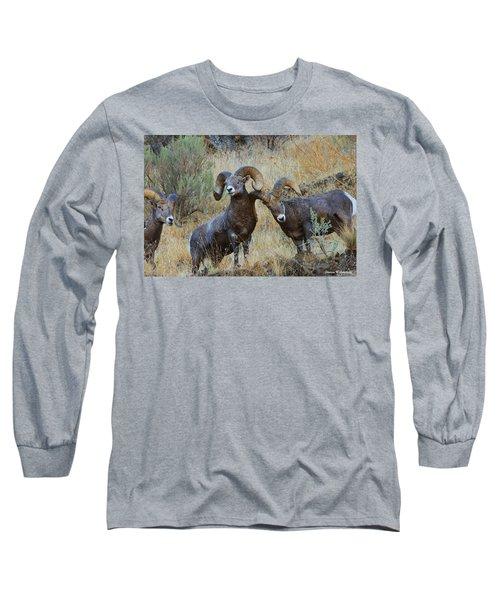 Got An Itch... Long Sleeve T-Shirt by Steve Warnstaff
