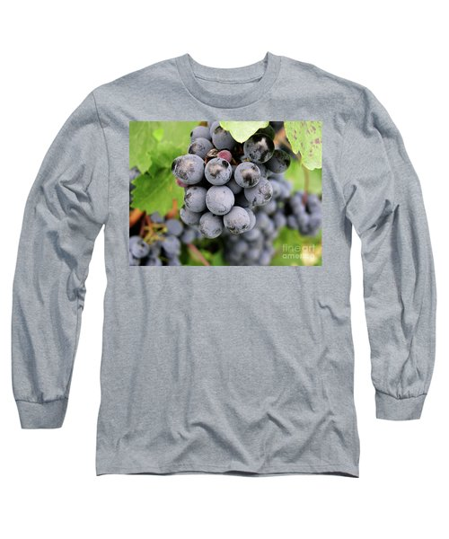 Grapes On The Vine Long Sleeve T-Shirt