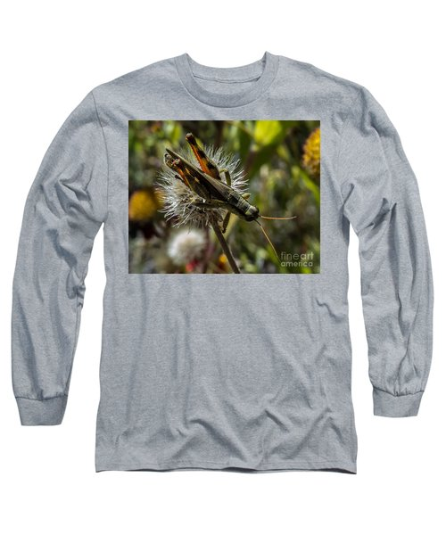 Grasshopper 1 Long Sleeve T-Shirt