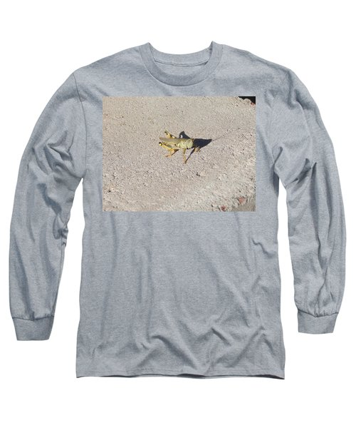 Grasshopper Curiosity Long Sleeve T-Shirt