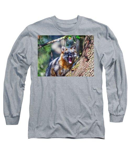 Gray Fox Awakens In The Tree Long Sleeve T-Shirt
