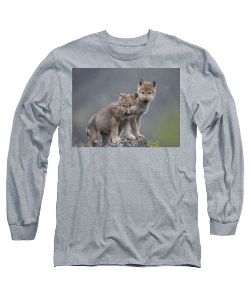 Gray Wolf Canis Lupus Pups In Light Long Sleeve T-Shirt