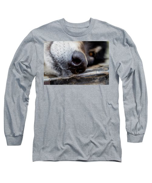 Long Sleeve T-Shirt featuring the photograph Gray Wolf Nose by Teri Virbickis