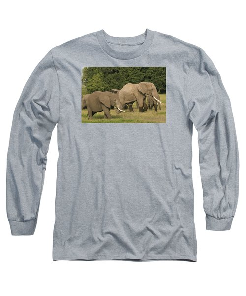 Long Sleeve T-Shirt featuring the photograph Grazing Elephants by Gary Hall