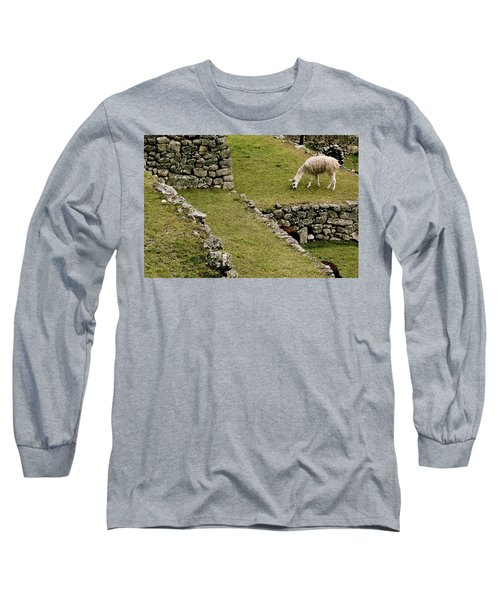 Grazing In Machu Picchu Long Sleeve T-Shirt