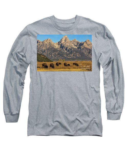 Grazing Under The Tetons Wildlife Art By Kaylyn Franks Long Sleeve T-Shirt
