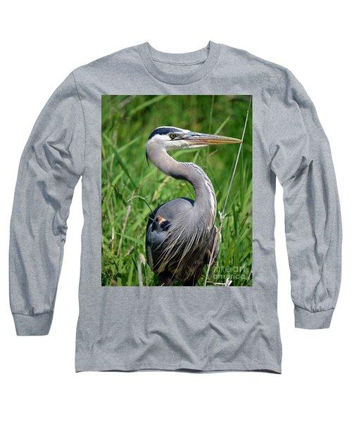 Great Blue Heron Close-up Long Sleeve T-Shirt