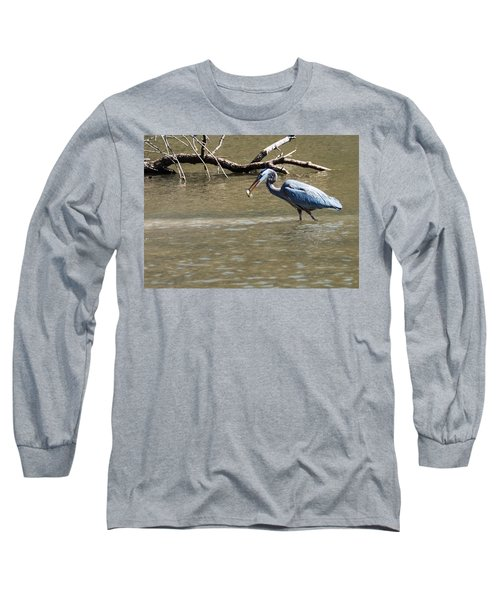 Great Blue Heron Dinning Long Sleeve T-Shirt by Edward Peterson