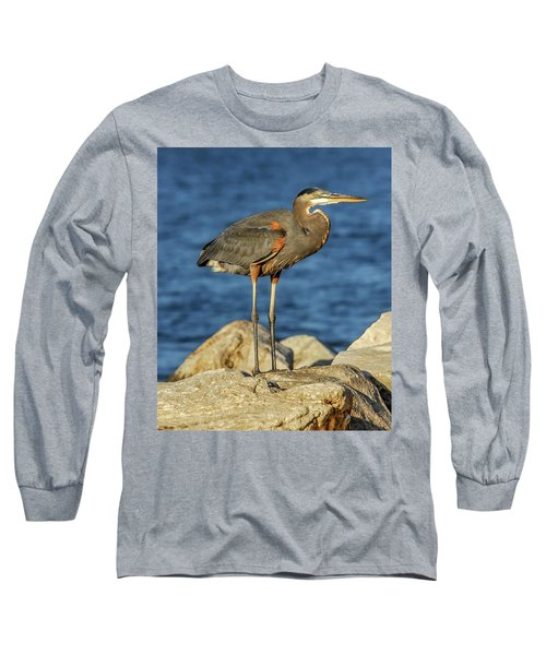Great Blue Heron On Rock Long Sleeve T-Shirt