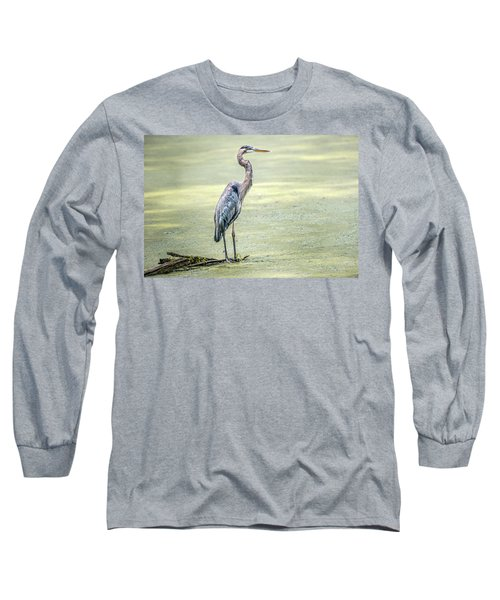 Great Blue Heron Standing In A Marsh Long Sleeve T-Shirt