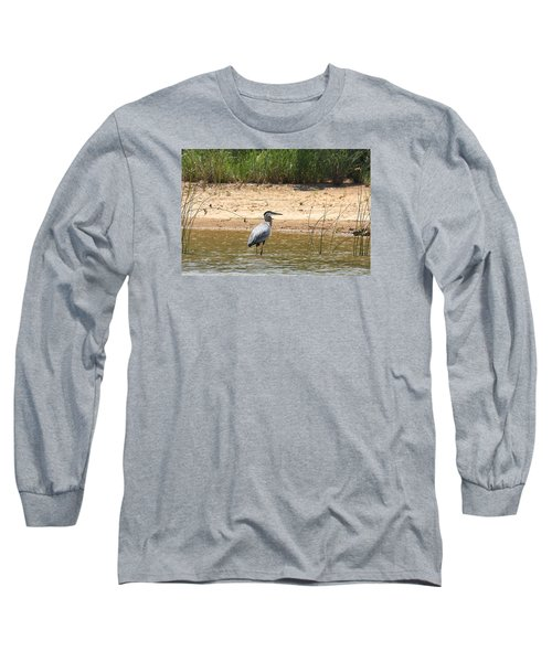 Long Sleeve T-Shirt featuring the photograph Great Blue Heron Wading by Sheila Brown