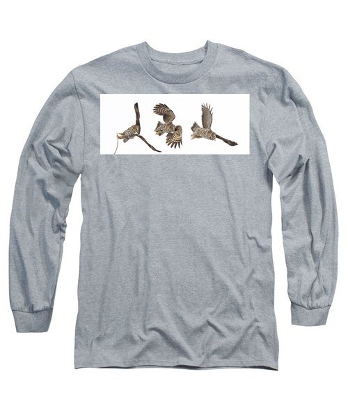 Long Sleeve T-Shirt featuring the photograph Great Grey Owl Hunting by Mircea Costina Photography