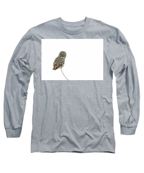Long Sleeve T-Shirt featuring the photograph Great Grey Owl On White by Mircea Costina Photography