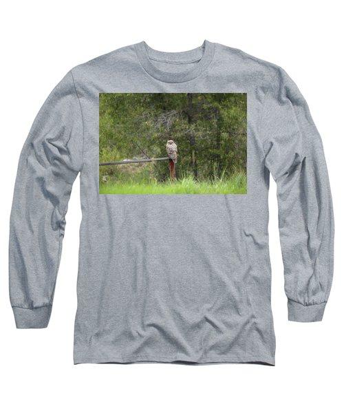 Greathornedowl2 Long Sleeve T-Shirt