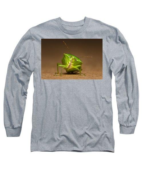 Green Bug Long Sleeve T-Shirt