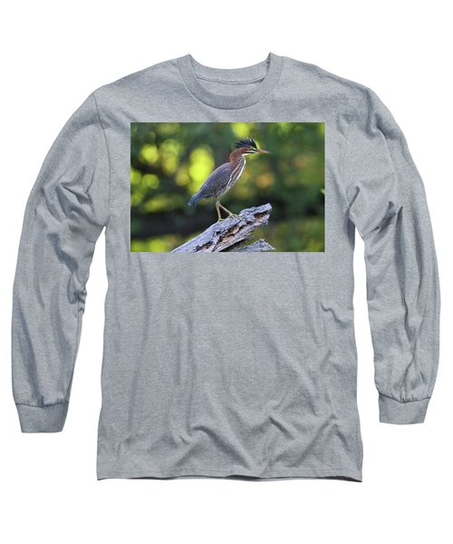 Green Heron Stump Long Sleeve T-Shirt