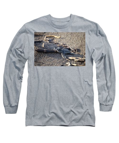Green Sea Turtle Hatchling Long Sleeve T-Shirt