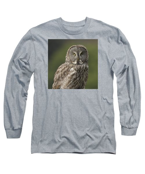 Great Gray Owl Portrait Long Sleeve T-Shirt by Doug Herr