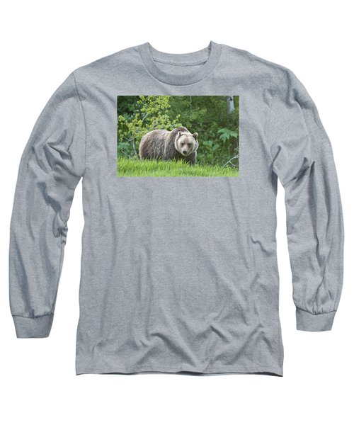 Grizzly Bear Long Sleeve T-Shirt by Gary Lengyel