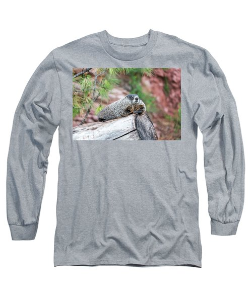 Groundhog On A Log Long Sleeve T-Shirt by Jess Kraft