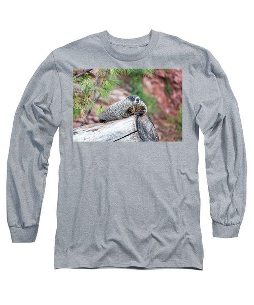 Groundhog On A Log Long Sleeve T-Shirt