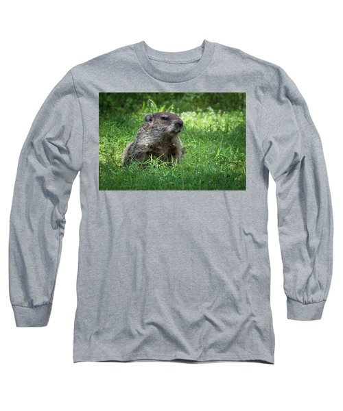 Groundhog Posing  Long Sleeve T-Shirt