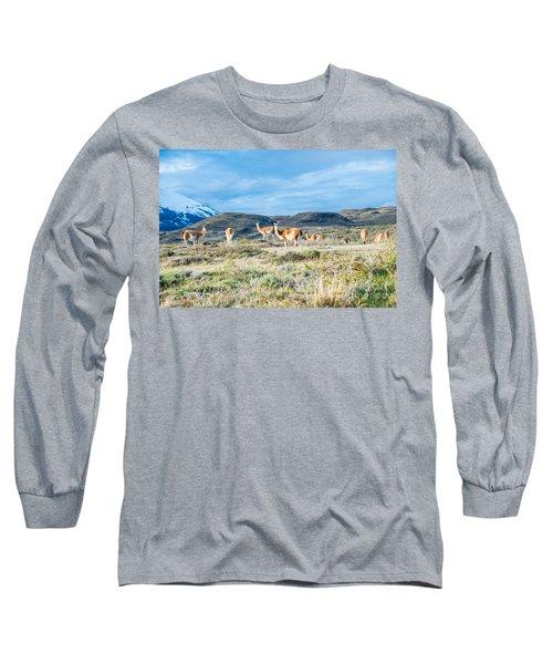 Guanaco In Patagonia Long Sleeve T-Shirt