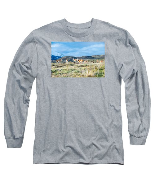Guanaco In Patagonia Long Sleeve T-Shirt