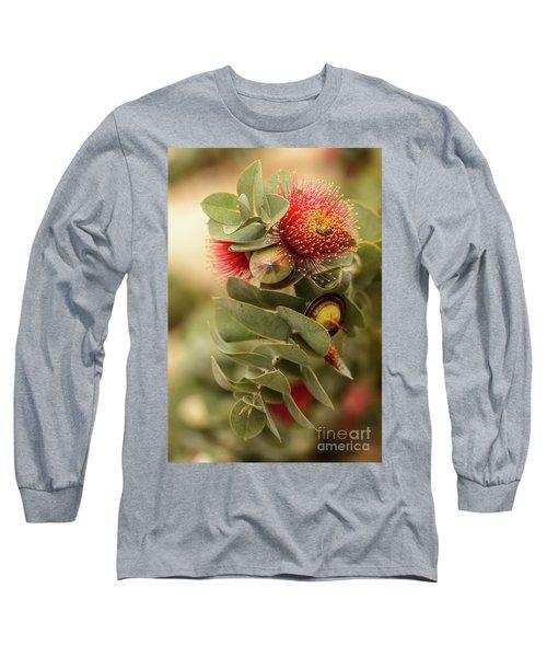 Gum Nuts Long Sleeve T-Shirt by Werner Padarin