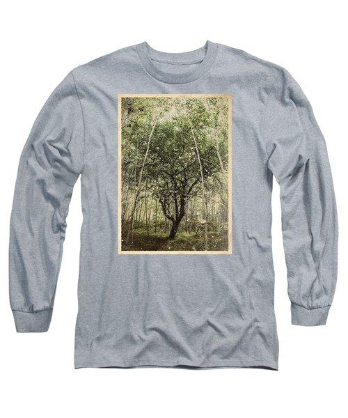 Hand Of God Apple Tree Poster Long Sleeve T-Shirt