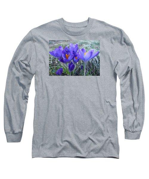Harbinger Of Spring Long Sleeve T-Shirt by Barbara McDevitt