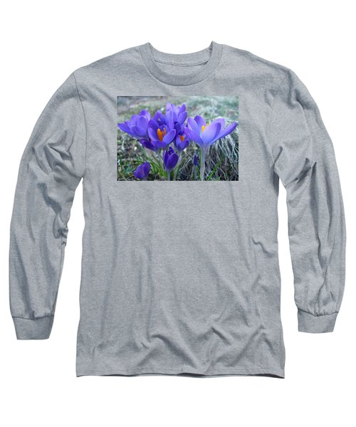 Harbinger Of Spring Long Sleeve T-Shirt