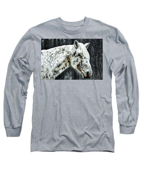 Hard Winter Long Sleeve T-Shirt