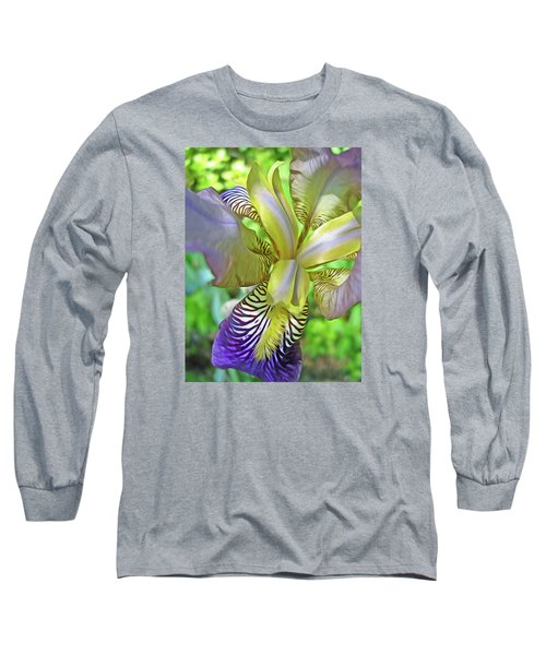 Harmony 4 Long Sleeve T-Shirt by Lynda Lehmann