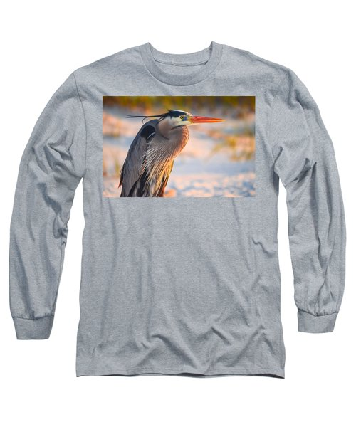 Harry The Heron With Plumage Close-up Long Sleeve T-Shirt