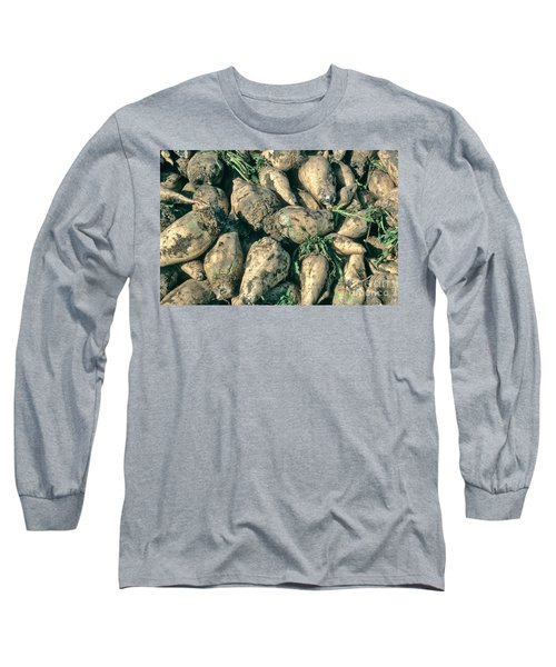 Harvested Sugar Beets Long Sleeve T-Shirt