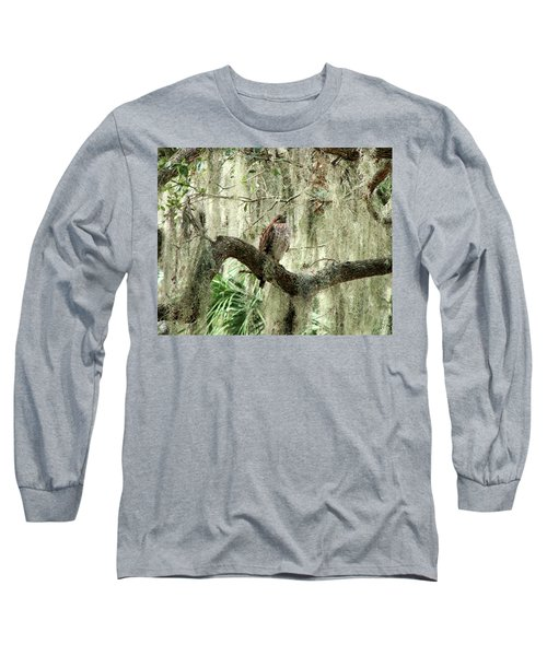 Hawk In Live Oak Hammock Long Sleeve T-Shirt