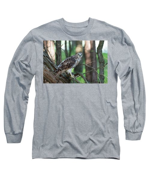 Hawk Portrait Long Sleeve T-Shirt