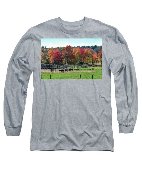 Heritage Farm In Easthampton, Ma Long Sleeve T-Shirt
