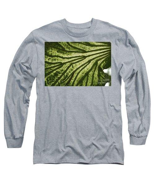 Hibiscus Tiliaceus Variegata 3 Long Sleeve T-Shirt