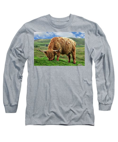 Highland Cow Long Sleeve T-Shirt by Anthony Dezenzio