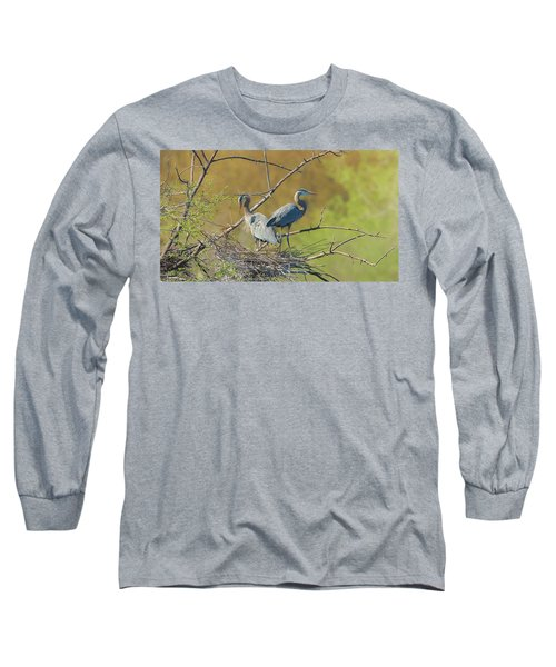 Home Town Blues Long Sleeve T-Shirt