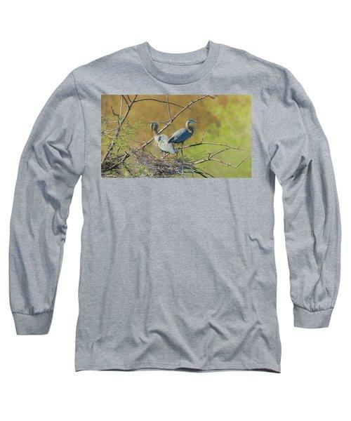 Home Town Blues Long Sleeve T-Shirt