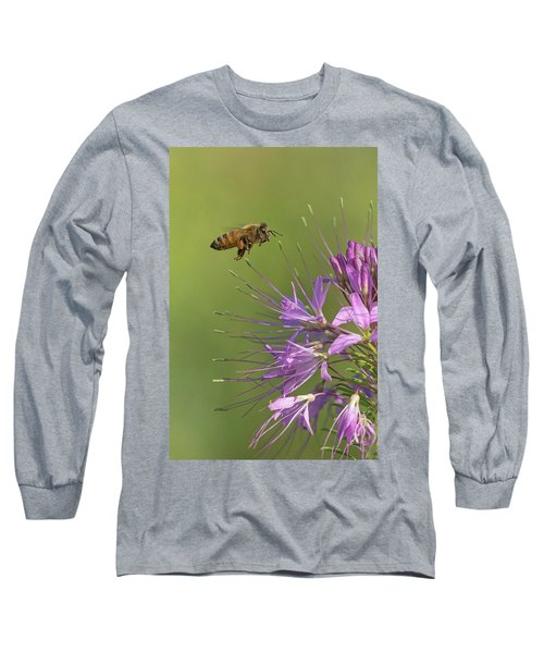 Honey Bee At Work Long Sleeve T-Shirt